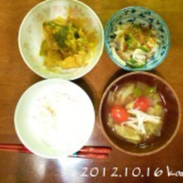ローラの鶏肉とカボチャのクリーム煮込み&オクラと5種の野菜のねばねばサラダ&ポトントマトスープ