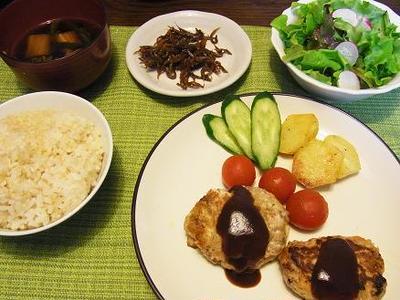 豆腐入りハンバーグ&日本食研ハンバーグソースのモニター