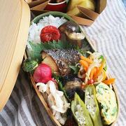 鰆の西京焼き弁当