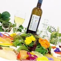 オトナ女子のための楽しく学ぶサントリーワインイベント