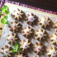 香辛料の酵母クッキー。