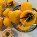 庭の柿♪&干し柿作り
