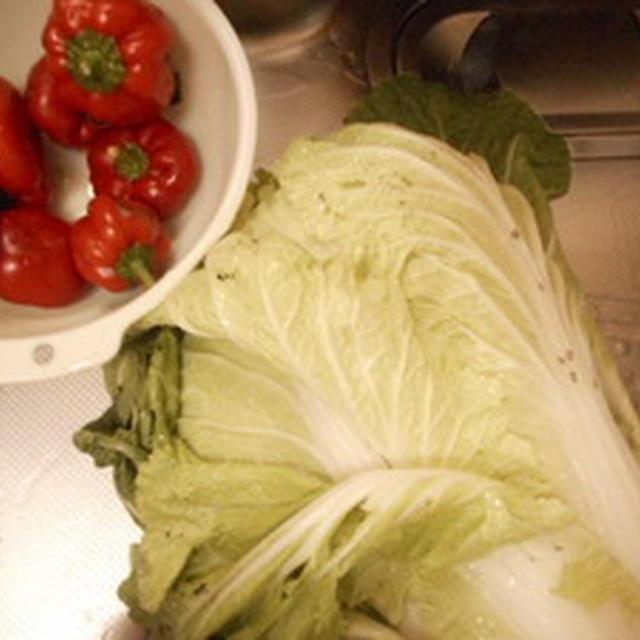 白菜を虫さんが食べてるけどいいのよ.....  鶏とつくねのもりもり秋なべ