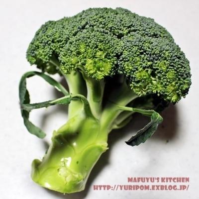 【静岡産ブロッコリーのお話 ~ お勧め!旨味と栄養キープのブロッコリーの茹で方と冷凍保存の方法。】
