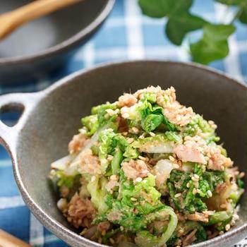 白菜とツナのごま味噌サラダ【#作り置き #お弁当 #マヨ不使用 #ツナ缶代用可 #湯かけ #副菜】