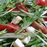 野郎飯流・明治 北海道十勝 スマートチーズ うまみ濃厚 チェダーブレンドを使ったサラダ