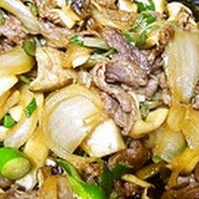 牛肉と玉ねぎのピリ辛丼