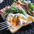【激ウマ】生ハムとポーチドエッグのオープンサンドレシピ【超簡単】