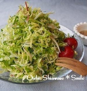 野菜を食せ!*春キャベツと香味野菜のサラダwith即席ドレッシング*