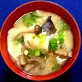 我家の夕食 秋鮭ときのこの粕汁 by kinokoさん