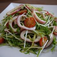 【モニター当選】ボイルイカと水菜のサラダ♪わさび風味♪