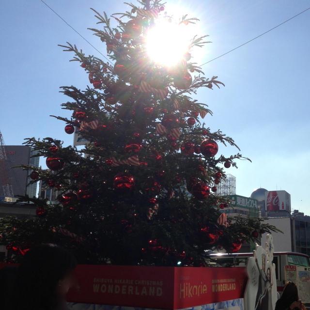 ヒカリエのクリスマスツリー&手作りゆずポン酢
