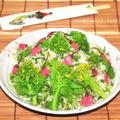 桜摘みは時間との戦いだった!? 春を食べよう♪菜の花と桜のご飯