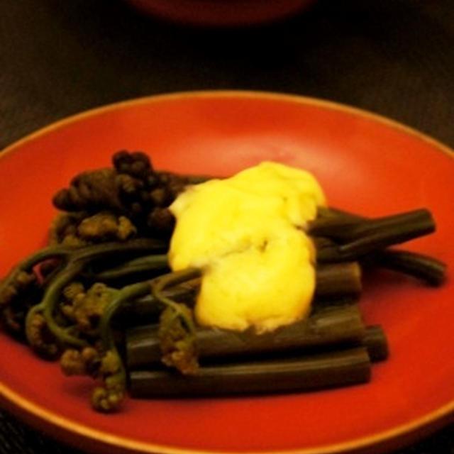 春キャベツの炙り葱味噌和え、胡瓜を小蕪と炊いたん、虹鱒塩焼きでシャルドネを