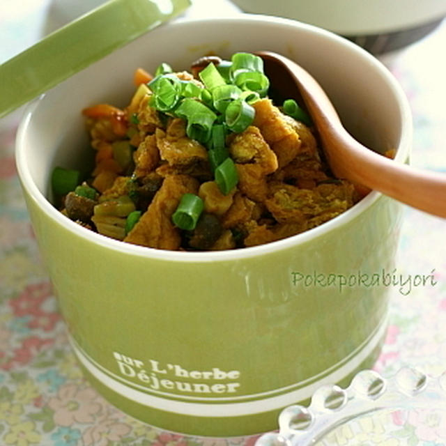 ご飯のおともに、うすあげ和風カレー味