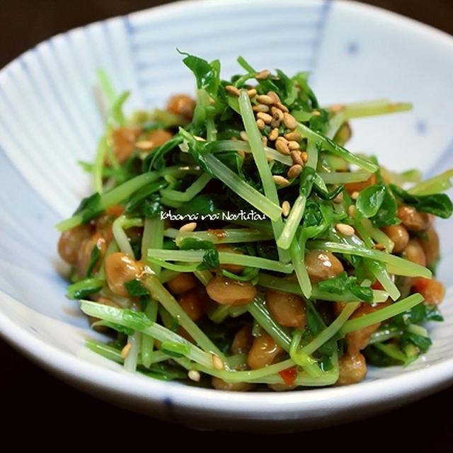 豆苗のピリピリ納豆