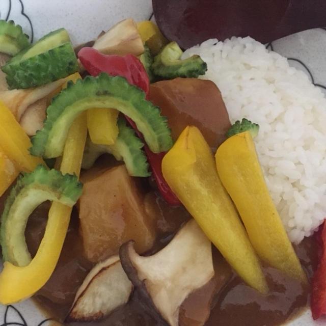 今日の晩御飯(((o(*゚▽゚*)o)))夏野菜たっぷりカレー