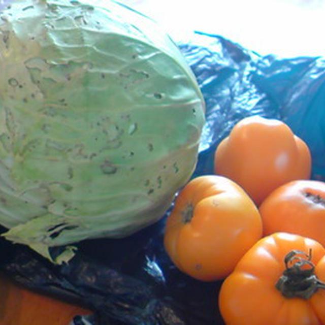 父作♪新鮮野菜。