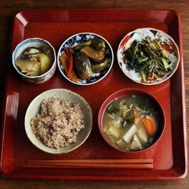 一汁三菜ごはん 里芋・ごぼう・人参などのお味噌汁、夕顔の煮物、水茄子・甘長唐辛子・パプリカの焼きびたし、空芯菜・モロヘイヤ・千切りじゃが芋の炒め物