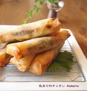 甜麺醤が決めて!お餅とチーズの欲張り春巻き(レシピ付)