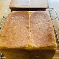 プルマンブレット&チョコロールパン