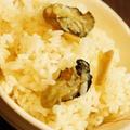 牡蠣の旨味たっぷり、潮汁風牡蠣飯、蕗の佃煮を添えて