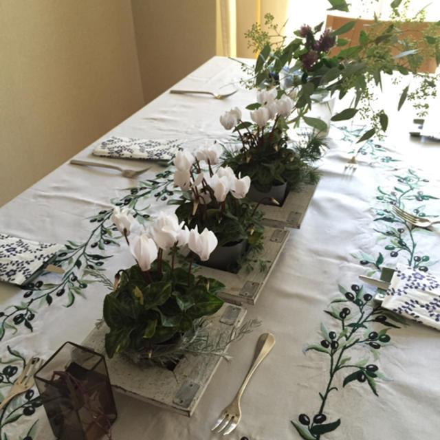 11月のイタリア料理教室研究科 料理写真と補足説明