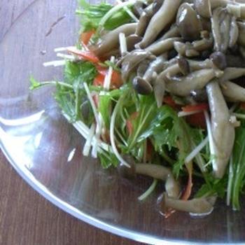 キノコと水菜のアンチョビガーリックサラダ