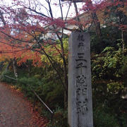 京都 三千院の紅葉はもうほぼピークでした