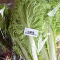 山東菜と根菜の塩炒め|有機野菜・自然栽培・産直宅配のtoriii(トリー)|そらの菜園