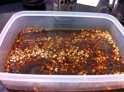 生麹で醤油麹と塩麹の正しい作り方