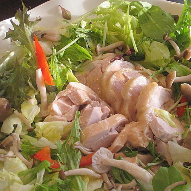 ゆで鶏のサラダ