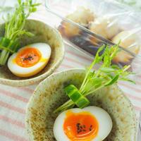 【レシピ・献立】茹で時間はコレだ!麺つゆで簡単半熟煮卵