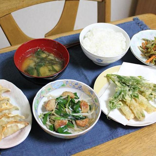 うどの天ぷらとニラともやしと鶏団子の炒めものとうどのきんぴらでうちごはん(レシピ付)