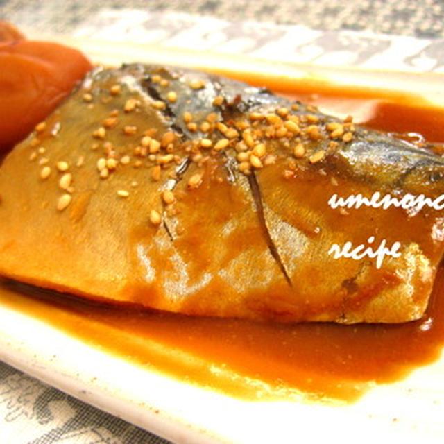 塩サバで鯖の味噌煮。°