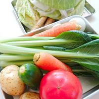 もりもり野菜を切る!「野菜の切り方レッスン」