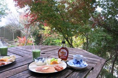 おうちで『紅葉狩り』しながら朝ごはん♪