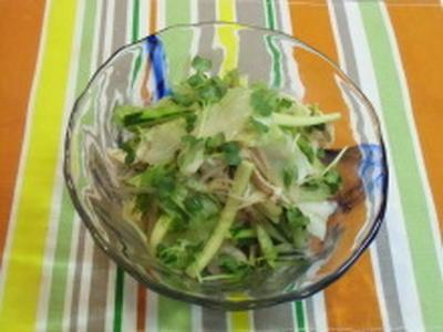 鶏ささみとせん切り夏野菜の胡麻酢和えpあ