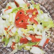 もりもり食べたい!白菜とサーモンのサラダ