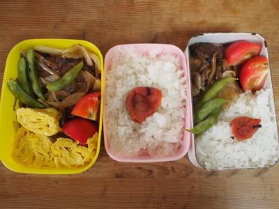 豚の生姜焼き弁当,焼き肉弁当