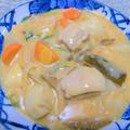 100皿シチュー 25皿目 根菜たっぷりの豚汁シチュー