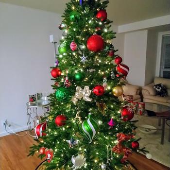 一緒にゴルフした人は近所の人だった ~ クリスマスツリー点灯式