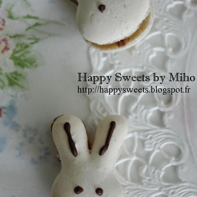 Macaron lapinウサギのマカロン