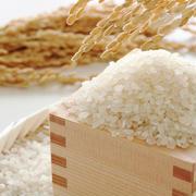 無洗米は割高なの?ブレンド米の気になるお味は?今さら聞けない「お米」基本のき