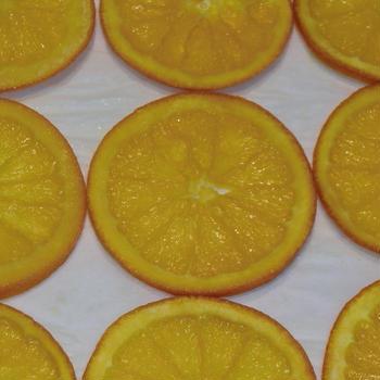 ♪佐賀県産オレンジセミドライ♪
