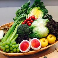 信州の高原野菜de食育塾
