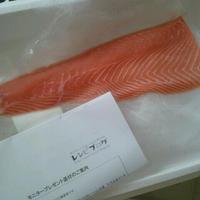 モニター☆ノルウェーサーモン刺身