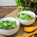 サニーレタスと生姜のポカポカスープ