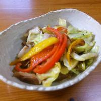 レシピブログ**塩ジャンで野菜炒め**
