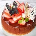 初めてのチョコレートチーズケーキ♪【初心者向けチョコレートチーズケーキと3Dチョコレート蝶々】 by HiroMaruさん